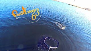 Эта хорошая щука спасла рыбалку Рыбалка на щуку осенью на спиннинг