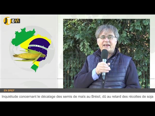 Le bilan céréalier européen provoque des tensions