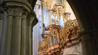 Girolamo Frescobaldi: Toccata nona - Manuel Schuen