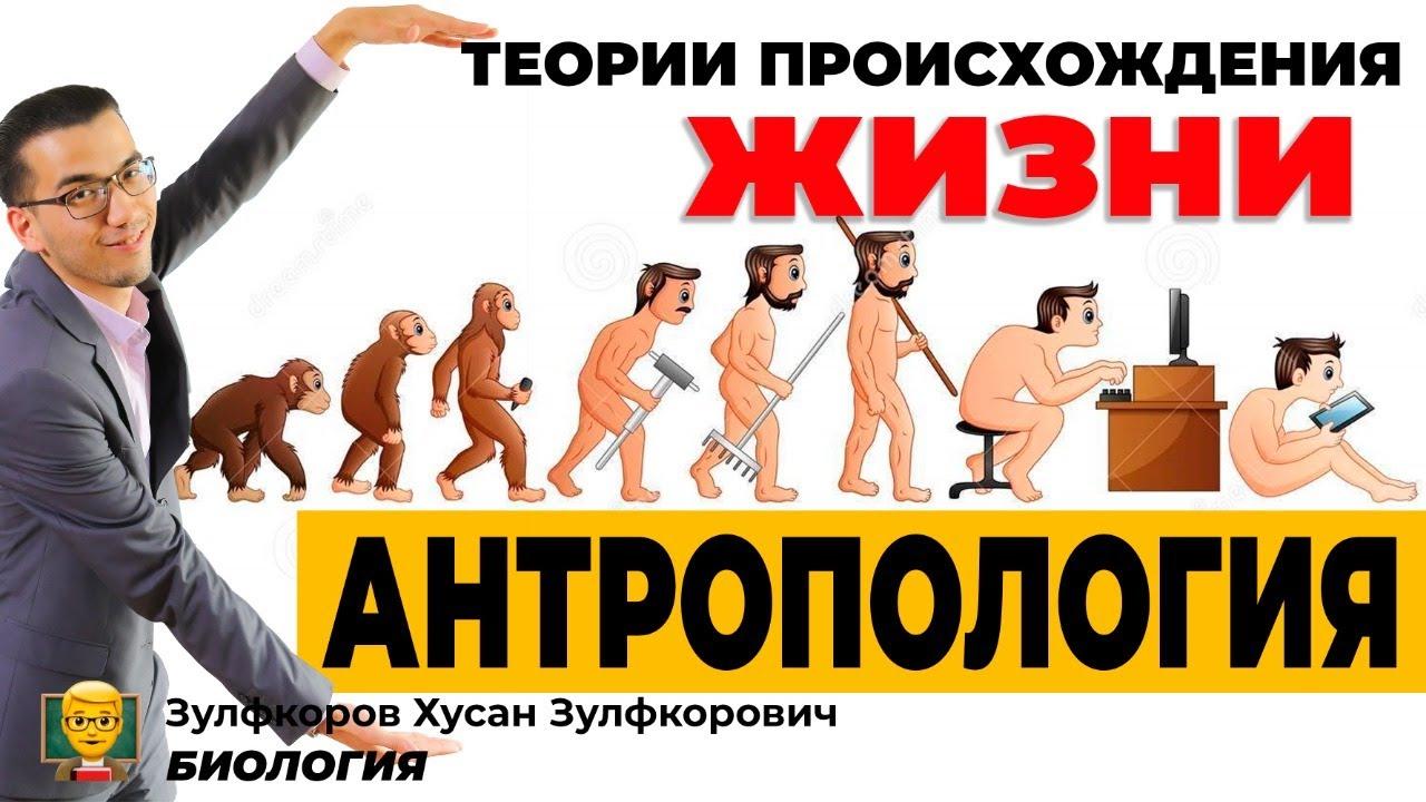 Теории происхождения жизни. Антропогенез.