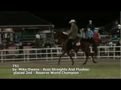 AVA 2012 Missouri Foxtrotter 3 Years World Championship