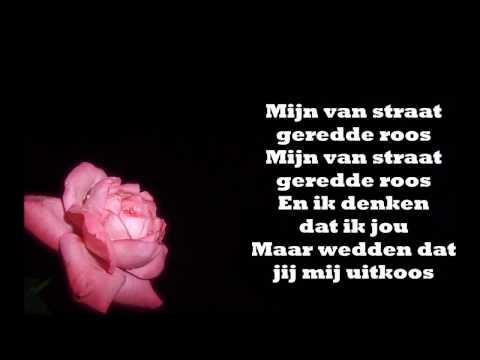 De Dijk - Mijn Van Straat Geredde Roos JBX
