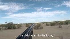 dove hunting day 3 in mesa az