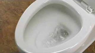 Hot Dog & Dog Food Flushing Super Toilet