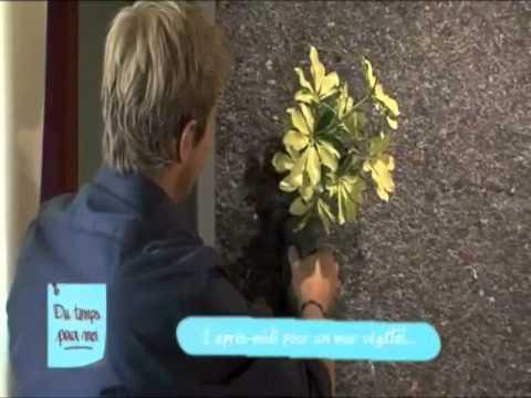 Mur v g tal int rieur vg tal3design sur teva youtube for Mur vegetal interieur