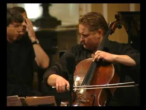 "Jean Sibelius ""Malinconia"", opus 20"