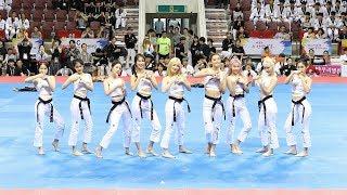 170731 [세계태권도한마당] 태권체조 시니어 부문 영상모음 (Taekwondo Aerobic Senior) 4K 직캠 by 비몽