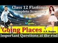 Going Places | CH-6 | 👇👇 Important Questions PDF in description | Class 12th | Flamingo