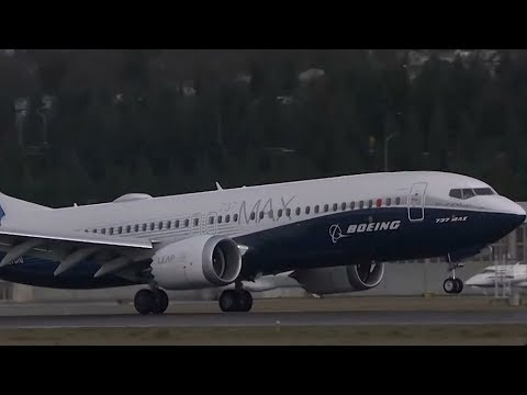 US grounds Boeing 737 Max 8 and 9 jets