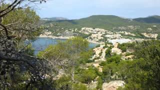 Hotel Africamar in Can Picafort (Mallorca - Spanien) Bewertung