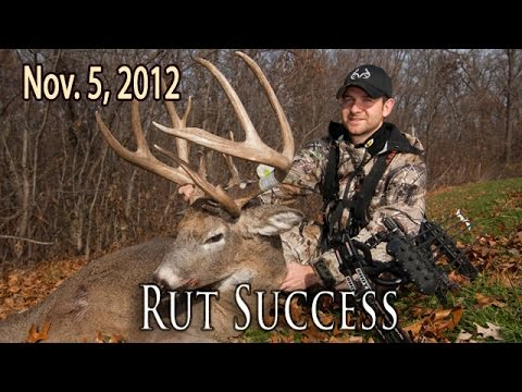 Rut Hunting Success   Midwest Whitetail 2012