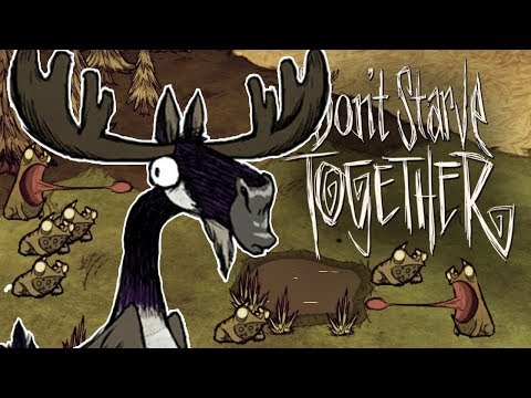 Frogs vs Moose Goose! - Don't Starve Together Gameplay - Hallowed Nights