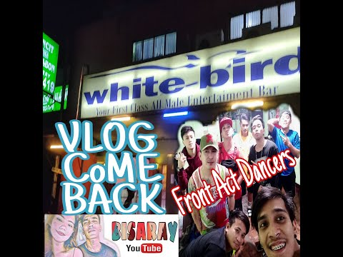 Experience White Bird Entertainment Bar (Vlog) ✓ Come Back - BISARAY UNIVERSE