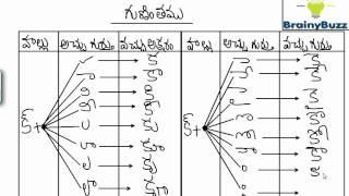 Telugu Guninthalu | Learn  Kha Gunintham