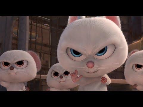 """Xem phim Phi vụ hạt dẻ 2: Công viên đại chiến - Phim hoạt hình """"The Nut Job 2 / Phi Vụ Hạt Dẻ"""" official trailer #2"""