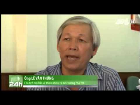 VTC14_Ô nhiễm môi trường biển từ hoạt động xả thải nuôi tôm