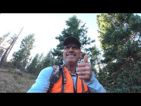 2020 Colorado Muzzleloader Elk Hunt
