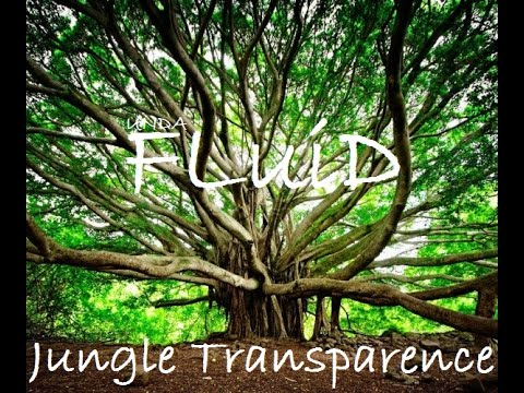 Ragga Jungle Mix 10/2016 By FLuiD