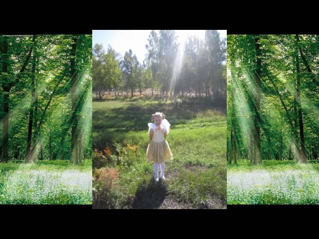 Изображение предпросмотра прочтения – ВероникаКайгородова читает произведение «Всё лес и лес. А день темнеет...» И.А.Бунина