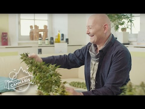 One Austrian Is Giving Out Medical Marijuana Despite the Consequences | WIDE WORLD OF CANNABIS