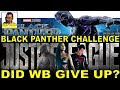 Did WB Give Up On JUSTICE LEAGUE?  DC Supporting The BLACK PANTHER Challenge!