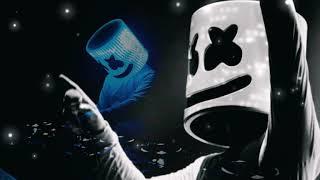 Marshmello and dj snake song mix ...