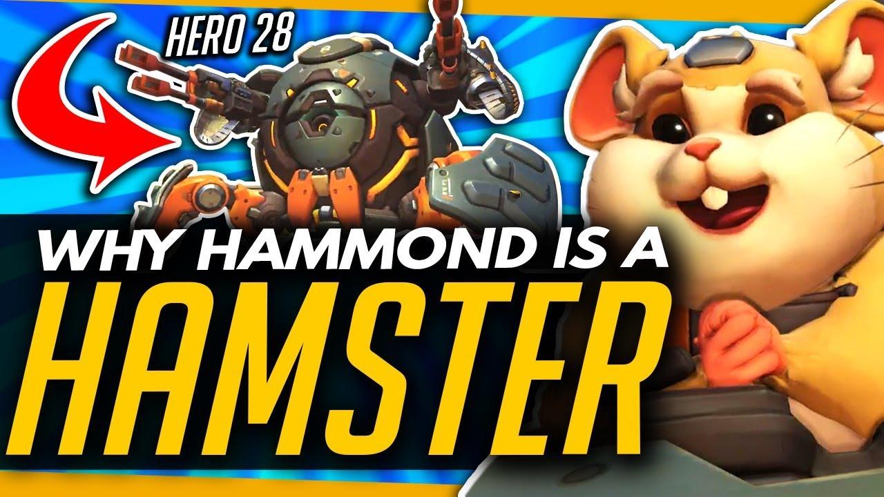 Overwatch Hero 28 is Hammond the hamster