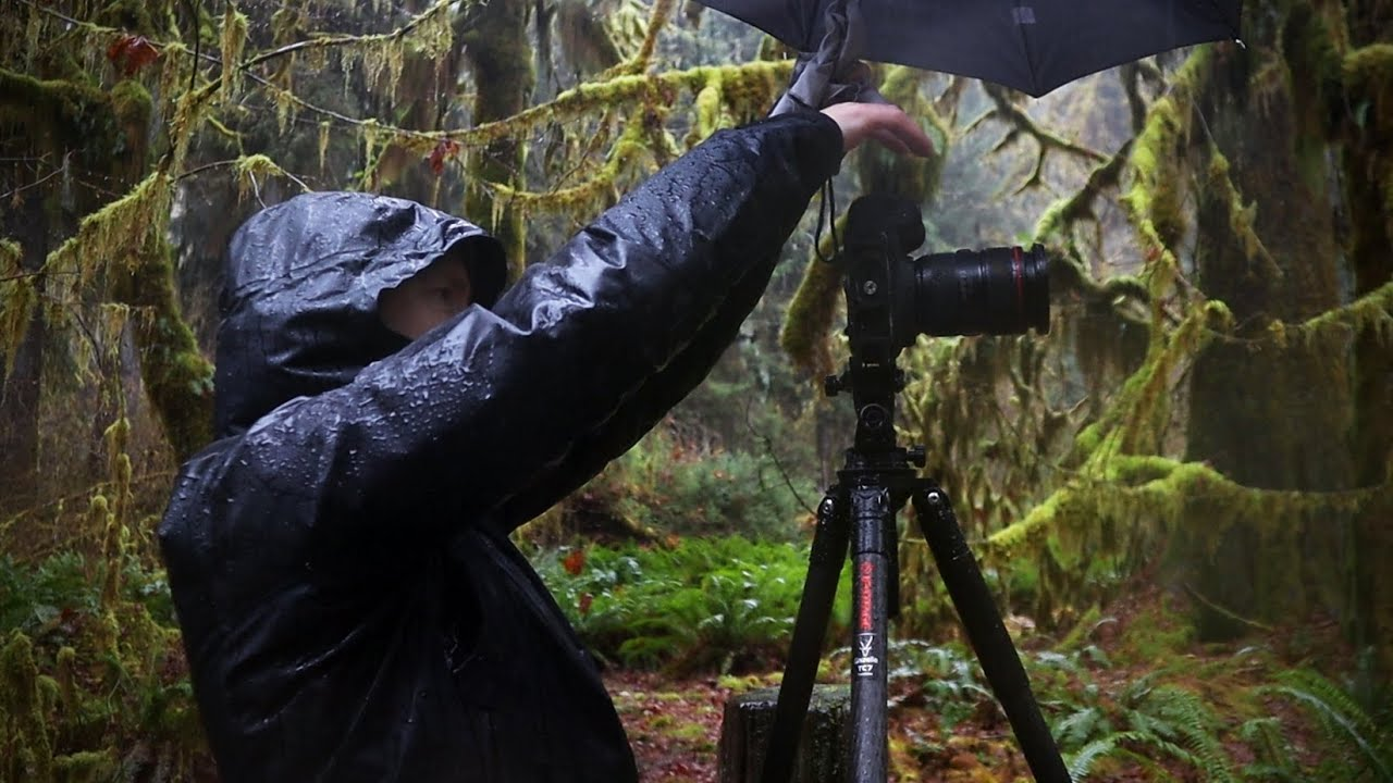 Landscape Photography in the Rain Forest - YouTube