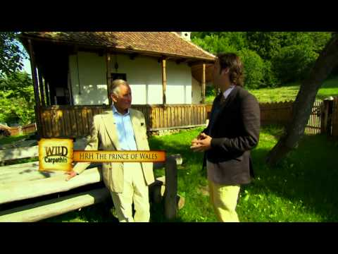 Wild Carpathia 3 clip showing TENT's projects in Romania