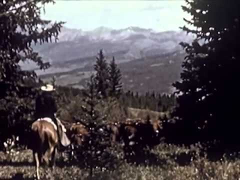 Roberson Hereford Ranch in Gunnison, Colorado: American Cowboy - 1950 - CharlieDeanArchives