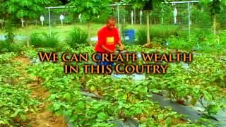 Gawad Kalinga Omnibus Video 2013