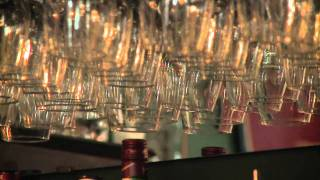 Wine Glasses Hanging From a Bar Rack