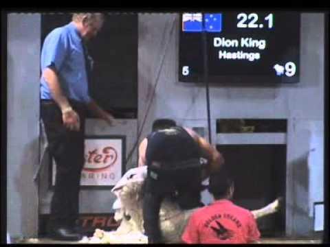 2013 Goldenshears - Open Shearing Final