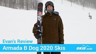 evan's Review-Armada B Dog Skis 2020-Skis.com 6 50