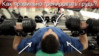 Как правильно подходить к тренировке груди?