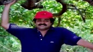 Malayalam  Film Song | POOTHIDAMBE | Thacholi Varghese Chekavar | K. J. Yesudas