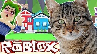 🐱 MY CAT PLAYS ADOPT ME IN ROBLOX (YOU WILL NOT BELIEVE WHAT HAPPENED)🐈