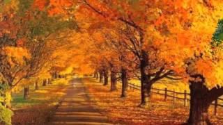 Самые красивые осенние мотивы   Легран Саксофон online video cutter com