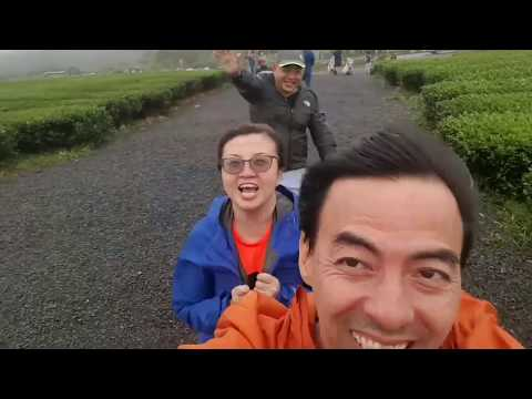 A Trip to Jeju Island in Typhoon Time