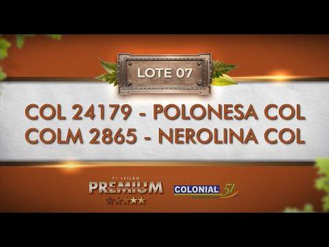 LOTE 07   COL 24179, COLM 2865