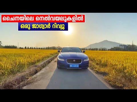 ചൈനയിലെ നെൽവയലുകളിൽ ഒരു Jaguar റിവ്യൂ By Baiju N Nair, China Trip EP #25