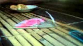 Video dari Telefon Saya