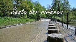 🐶 TOUTOU VADROUILLE : EN NORMANDIE ♥ 🐾 - #3 Sente des rivières (Montivilliers 76290)