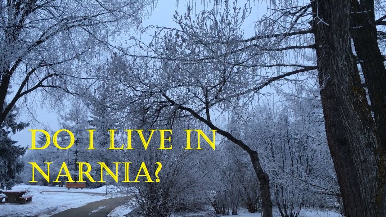 Do I Live In Narnia Youtube