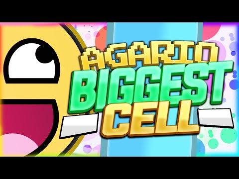 WORLD'S BIGGEST CELL & MY RECORD ( Agario Largest Tips )