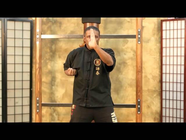 Master Redmond Wing Chun 1st form (SLT)