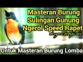 Masteran Sulingan Gunung Ngerol Speed Rapet Dengan Terapi Air  Mp3 - Mp4 Download
