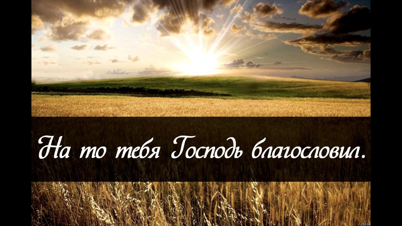На то тебя Господь благословил - Александр Тиханович