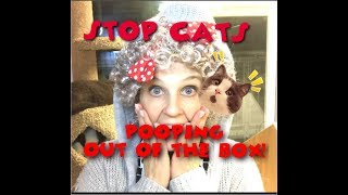 How To Stop Your Cat From Pooping Outside The Litter Box