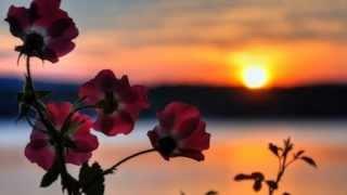 Download Rudy La Scala - Como Pasan Los Días MP3 song and Music Video
